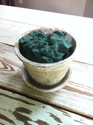 y tuong cam hoa de ban dep lung linh - 3