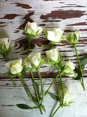 y tuong cam hoa de ban dep lung linh - 7
