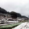 Tin tức - Hà Giang: Xuất hiện tuyết rơi ở Mèo Vạc