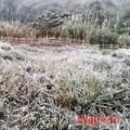 Tin tức - Lạnh -2 độ C, Nghệ An xuất hiện băng tuyết