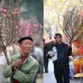 Tin tức - Chợ hoa Tết Hàng Lược nay và xưa