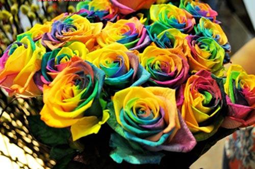 valentine: gia hoa tuoi thay doi tung gio - 3