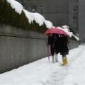 Tin tức - Bão tuyết tấn công Tokyo, 19 người chết