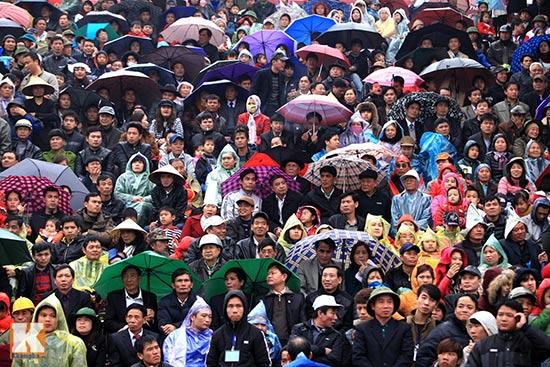 Đội mưa xem lễ hội chọi trâu đầu tiên tại Hà Nội-2