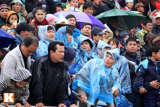 Đội mưa xem lễ hội chọi trâu đầu tiên tại Hà Nội-3