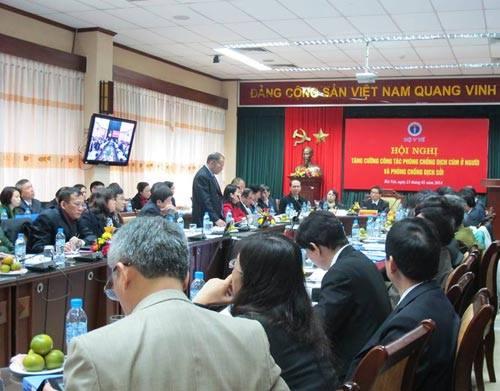 Lo ngại gà bệnh từ Trung Quốc tuồn sang Việt Nam-1