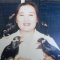 Tin tức - Nữ 'phù thủy' với tuyệt kỹ luyện chim ở Vũng Tàu