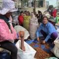 Mua sắm - Giá cả - Thu mua cả hạt mây để xuất sang Trung Quốc