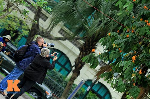 Đến Hà Nội ngắm hoa nhà Phật khoe sắc-16