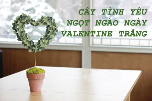 cay tinh yeu ngot ngao cho valentine trang - 1