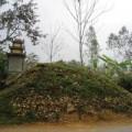 Tin tức - Kỳ lạ ngôi mộ vô chủ ngày một phình to
