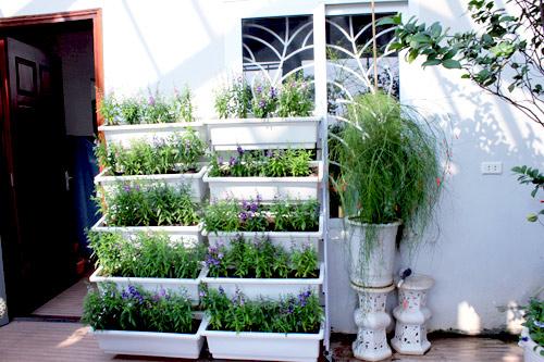 Cải tạo vườn sân thượng trong 3 tuần đẹp mê ly-12