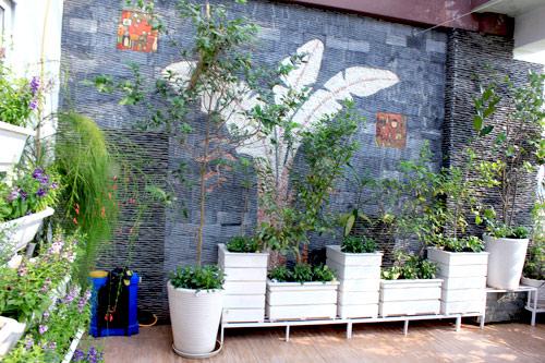 Cải tạo vườn sân thượng trong 3 tuần đẹp mê ly-2