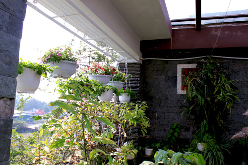 Cải tạo vườn sân thượng trong 3 tuần đẹp mê ly-11