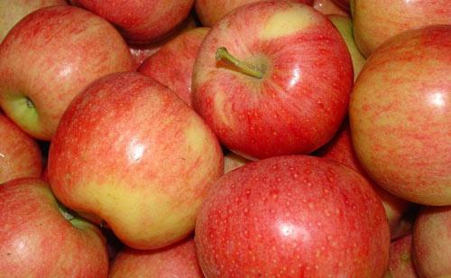 6 lí do quan trọng bạn nên ăn táo hàng ngày-1