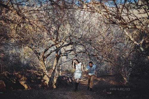 Bộ ảnh cưới ngập sắc hoa của cặp đôi yêu nhau 10 năm-2