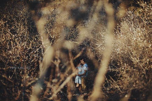 Bộ ảnh cưới ngập sắc hoa của cặp đôi yêu nhau 10 năm-6