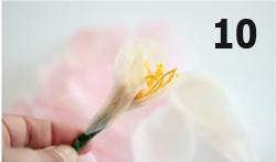 Hoa giấy nở bừng rực sắc ngày 8/3-10