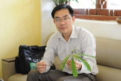 "chon vang tam, ha noi ""trong nham"" cay ""go but chi"" - 2"