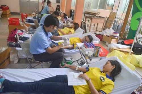 TP.HCM: Sôi nổi chiến dịch Xuân tình nguyện 2016-15