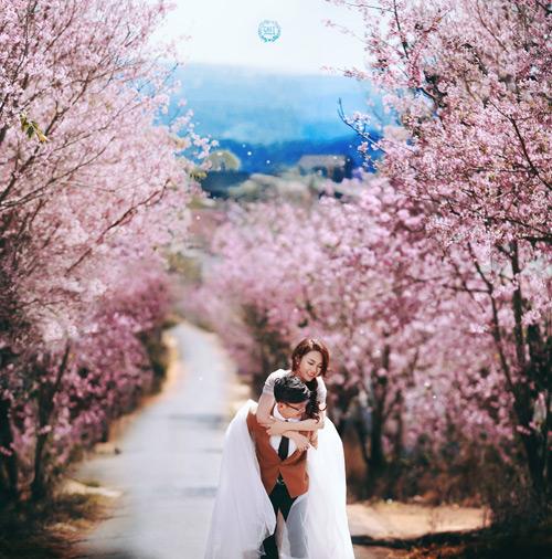 Đẹp mê hồn bộ ảnh cưới ngập tràn sắc hoa ngày xuân-9