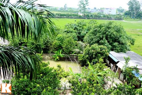 choang vang nha nghin met cua 3 danh hai dat bac - 14