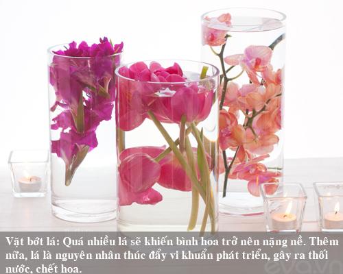 9 bi kip giu hoa tuoi lau me nen thu san - 9