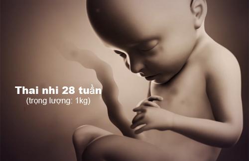 Mẹ sẽ không tiếc khi xem những hình ảnh quá amp;#34;chấtamp;#34; về sự lớn lên của thai nhi - 17