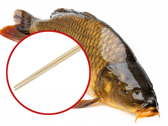 Cách mổ cá không cần rạch bụng gây sốt