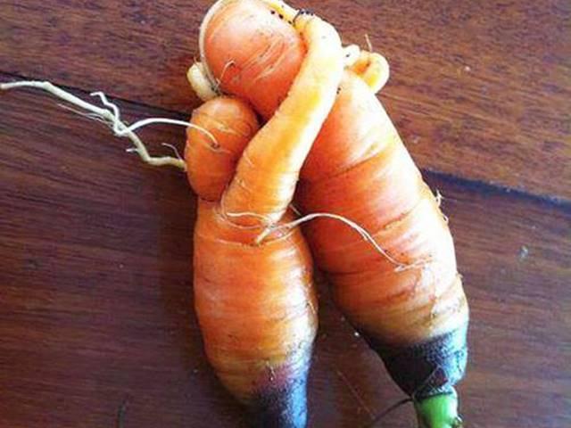 Những loại rau củ quả mang hình dáng con người, nhạy cảm đến phát ngượng