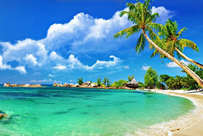 Bãi Dài – Phú Quốc  Bãi Dài nằm ở phía Tây bắc của đảo Phú Quốc là một bãi biển sạch, đẹp và còn rất hoang sơ. Có đường bờ biển dài gần 20km, Bãi Dài được xem là thiên đường với nắng vàng, nước mát và không gian tĩnh lặng hoang sơ, là nơi lý tưởng để tắm nắng, ngắm hoàng hôn và bơi lặn. Vào năm 2009, Bãi Dài được bình chọn là đứng đầu trong 13 bãi biển đẹp và hoang sơ nhất thế giới.  Ảnh: Vina Travel