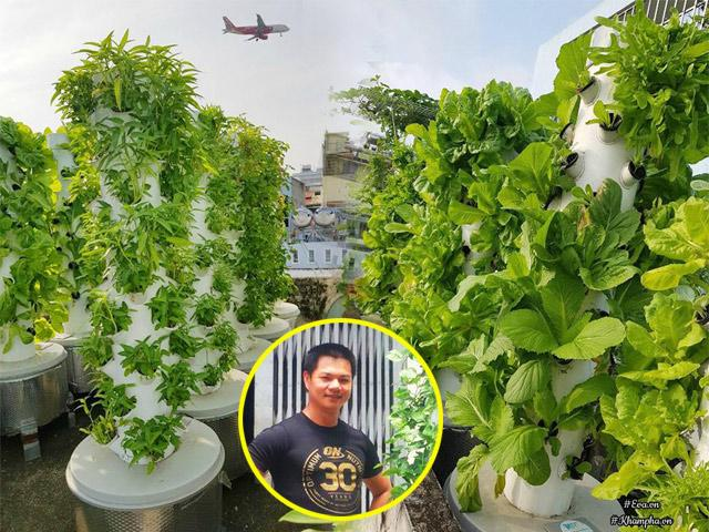 Biết vợ mang bầu, ông bố Sài Thành quyết trồng rau sạch bảo vệ sức khỏe vợ con