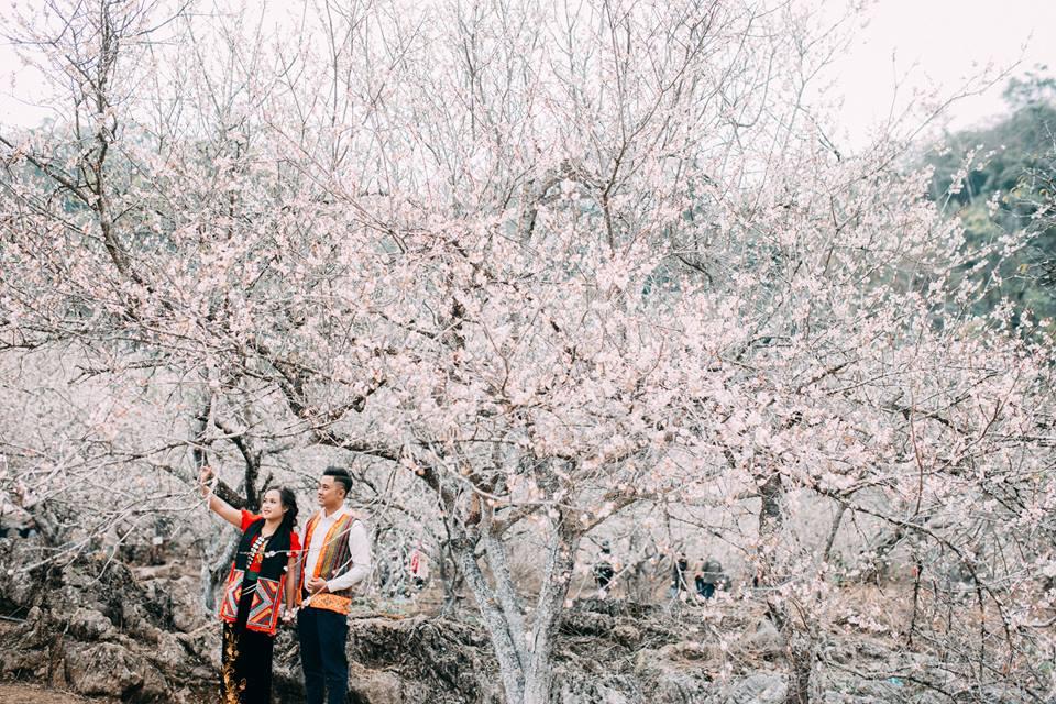 """Mê mẩn bộ ảnh """"gặp nhau giữa rừng mơ"""" của cặp đôi Sơn La"""