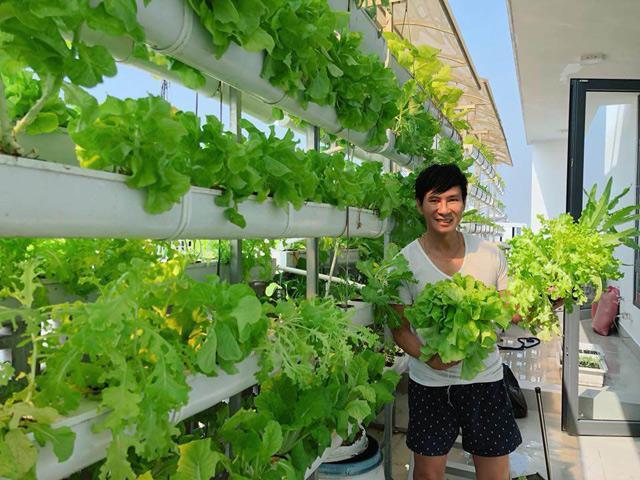 Người hâm mộ thích thú với cây xà lách to như bó hoa của nhà Lý Hải - Minh Hà