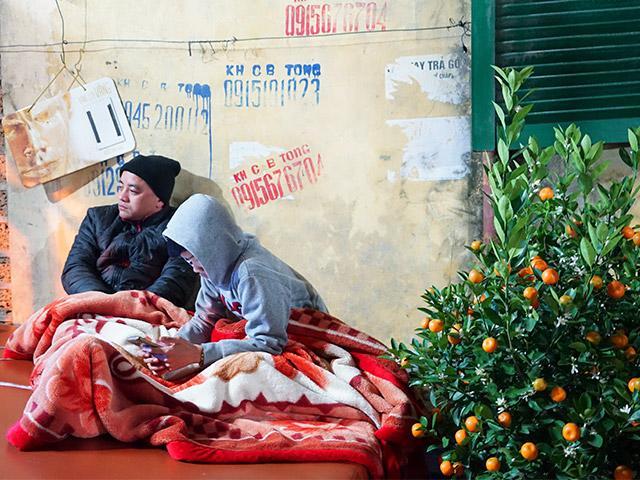 Trắng đêm trông giữ đào, quất cảnh trong giá rét ở Hà Nội