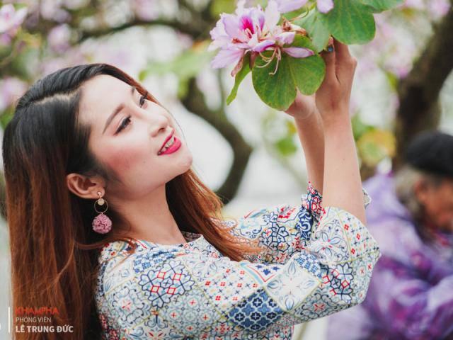 Hà Nội: Hoa ban nở dịu dàng, chị em lên đồ chụp ảnh cực đẹp