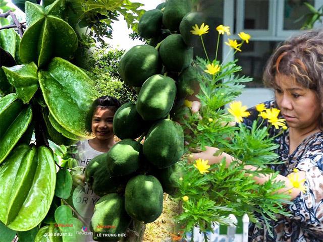 Thăm vườn rau quả gần 1000m² sai trĩu trịt đáng ngưỡng mộ của NSND Thanh Hoa ở ngoại ô