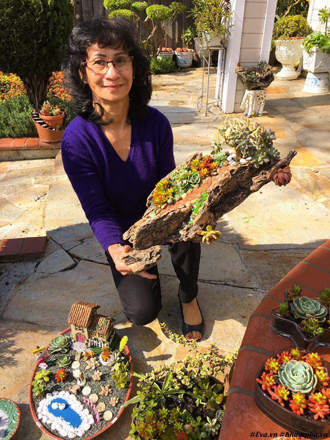 Vườn hoa sen đá hàng nghìn cây đáng ngưỡng mộ của mẹ Việt sau 7 năm trồng hoa xứ người - 1
