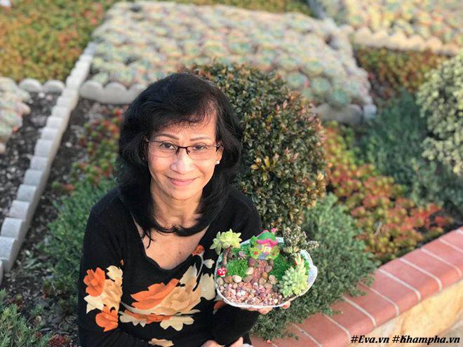 Vườn hoa sen đá hàng nghìn cây đáng ngưỡng mộ của mẹ Việt sau 7 năm trồng hoa xứ người - 6