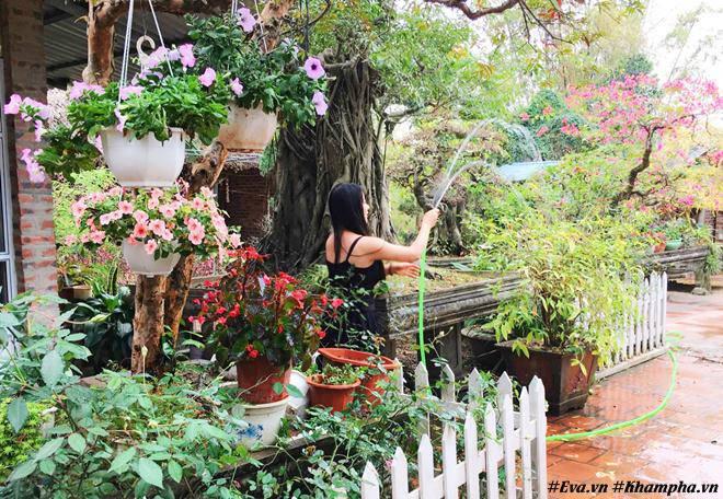 Chốn đi về bình yên ngập tràn hoa trái ai cũng mơ của người phụ nữ Hà Nội đa tài