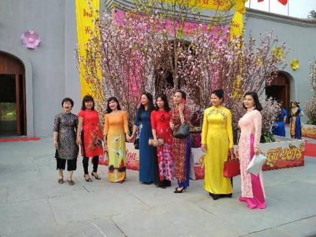 Hàng nghìn cành anh đào, mai vàng nở rực rỡ ở Yên Tử