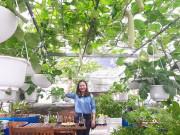 Nhà đẹp - Choáng ngợp với khu vườn 100m² phủ kín rau quả sạch của bà mẹ bận rộn
