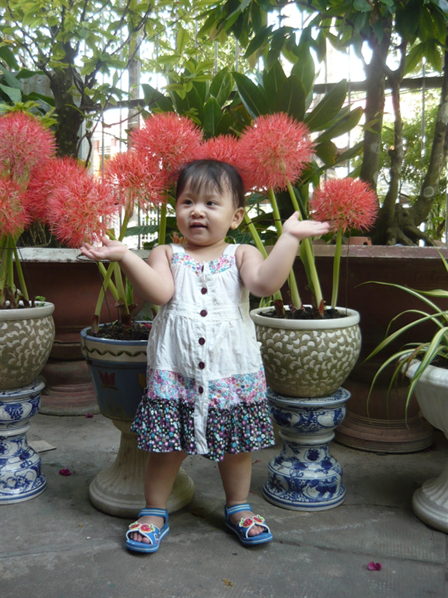 Bé Phạm Hồ Thanh An là 'công chúa' nhỏ đáng yêu của cả nhà.