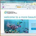Eva Sành điệu - 5 bước tăng tốc toàn diện cho Internet Explorer