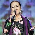 Làng sao - Nghệ sĩ Hồng Vân bị cướp giật túi xách