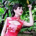 Làng sao - Lâm Chi Khanh duyên dáng với xường xám