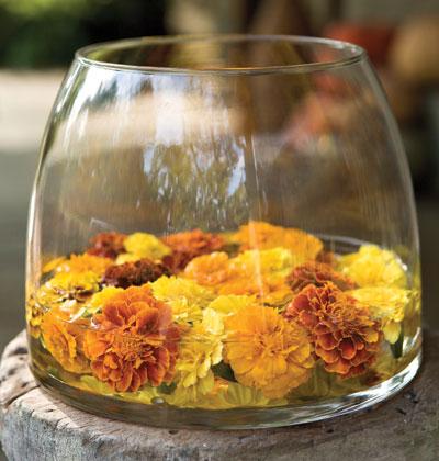 """30/4: cam hoa dep cho chong """"lac mat"""" - 11"""