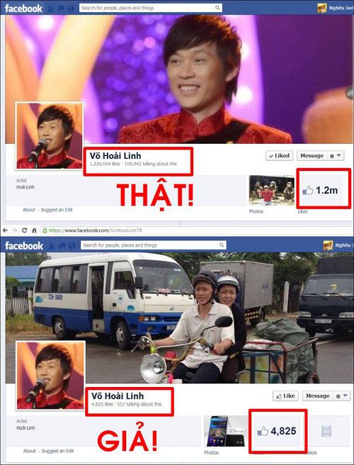 hoai linh 'dong cua' facebook vi bi nhai - 2