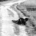 Tin tức - Người đi tìm sự thật ảnh thảm sát Mỹ Lai