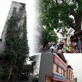Nhà đẹp - Những kiểu nhà 'quái dị' ngay giữa Hà Nội